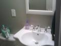 bathroom renovations_5_sink